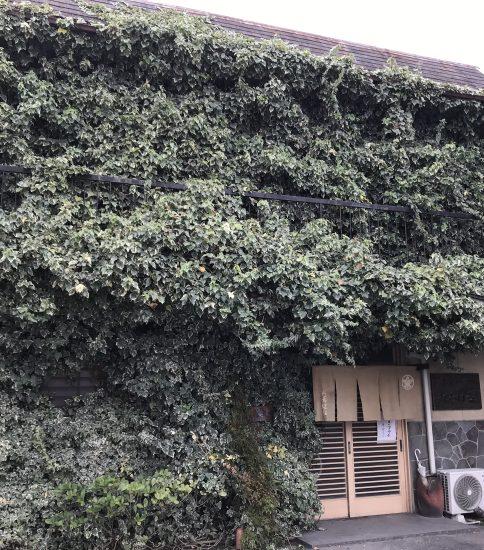 岐阜県羽島市「たちばな」